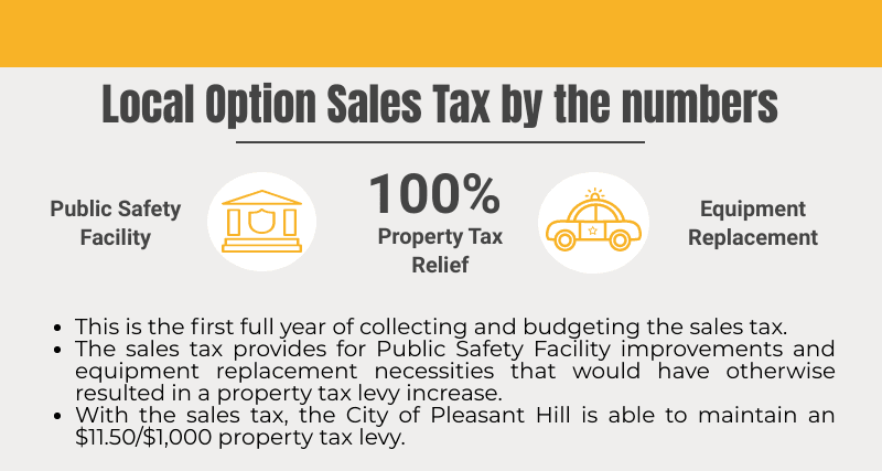 2020 Budget Local Option Sales Tax